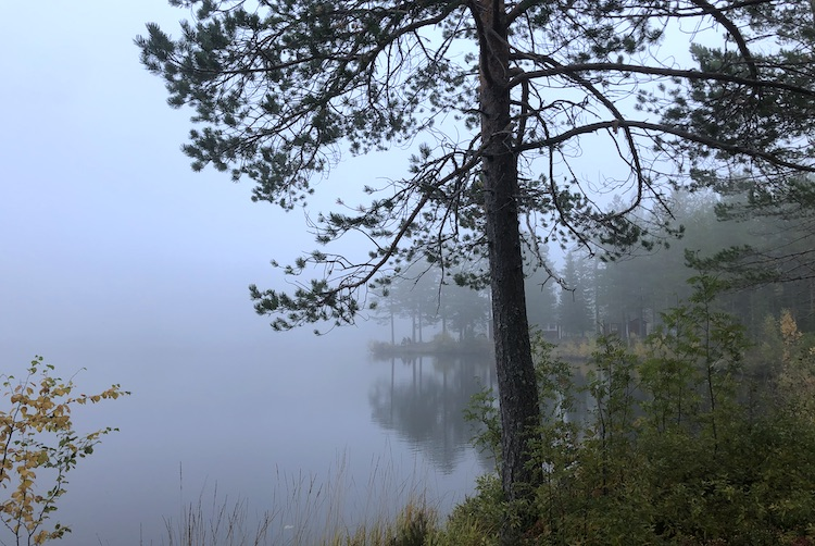Fällbodtjärner covered in fog