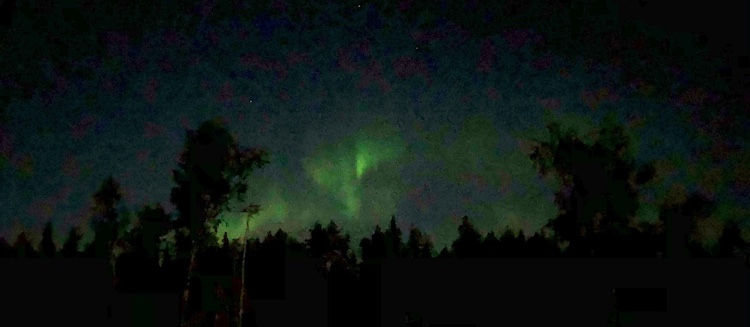 Northern lights captured with my iPhone